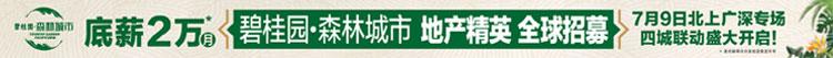 碧桂园集团营销中心招聘信息