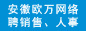安徽省欧万网络科技有限公司招聘信息