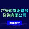 六安市叁阳财务咨询有限公司