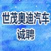 湖南世茂汽车销售服务有限公司