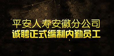 中国平安人寿保险股份有限公司安徽分公司