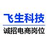 飞生(上海)电子科技有限公司