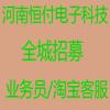 河南恒付电子科技有限公司