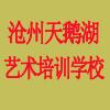 沧州市运河区天鹅湖艺术培训学校有限公司