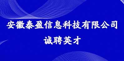 安徽泰盈信息科技有限公司