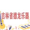 吉林省德龙乐器经销有限公司