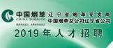 http://lnyc2019.zhaopin.com/