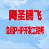 湖南網聖騰飛信息技術有限