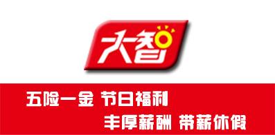 山東大智教育集團股份有限公司