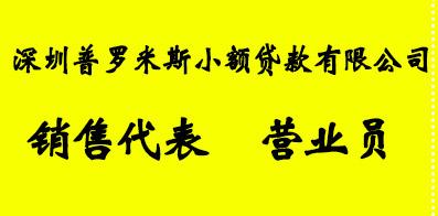 深圳普罗米斯小额贷款有限公司
