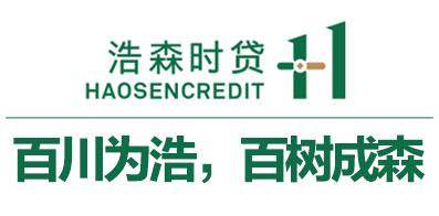 深圳市浩森小额贷款股份有限公司