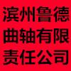 濱州魯德曲軸有限責任公司