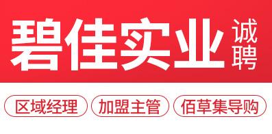 河南碧佳实业股份有限公司