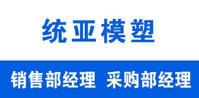 山东统亚模塑科技实业有限公司