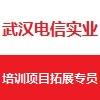 武漢電信實業有限責任公司