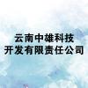 云南中雄科技开发有限责任公司