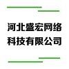 河北盛宏网络科技有限公司