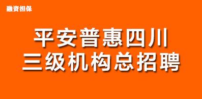 平安普惠融資擔保有限公司四川分公司