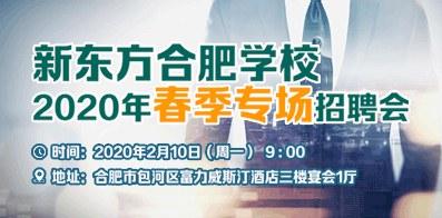 合肥新東方培訓學校有限公司