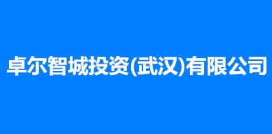 卓尔智城投资(武汉)有限公司