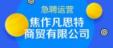 https://company.zhaopin.com/CZ329924030.htm