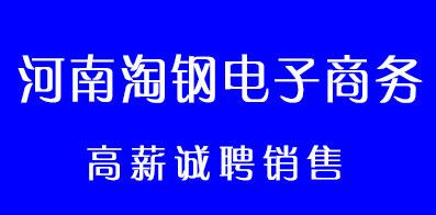 河南淘鋼電子商務有限公司