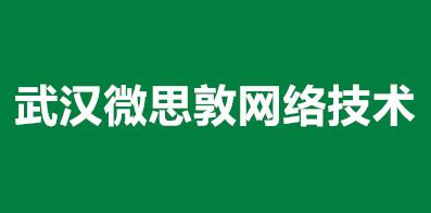 武漢微思敦網絡技術有限公司