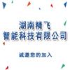 湖南精飞智能科技有限公司