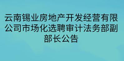 云南锡业房地产开发经营有限公司