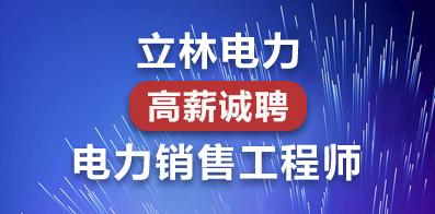 陕西立林电力技术有限公司