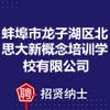 蚌埠市龙子湖区北思大新概念培训学校有限公司