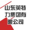 山东英特力集团有限公司