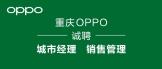 https://company.zhaopin.com/CZ859310420.htm