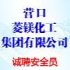 营口菱镁化工集团有限公司