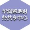 华润置地(武汉)数据咨询服务有限公司