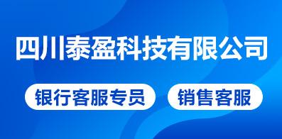 四川泰盈科技有限公司