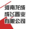 河南龙成成飞置业有限公司